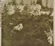 Ruine Postkarte 1906